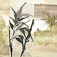 asian/LandscapeBamboo3-small