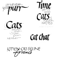 CatWords3